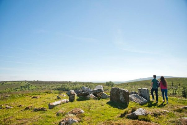 Cavan Burren Park Wedge Tomb