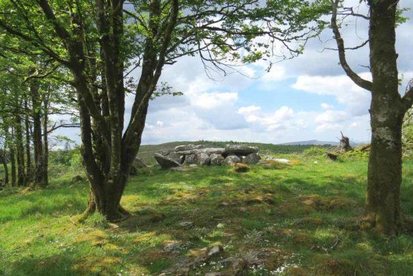 Giants Grave Wedge Tomb Cavan Burren